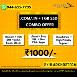 skylarkhost.com combo offer